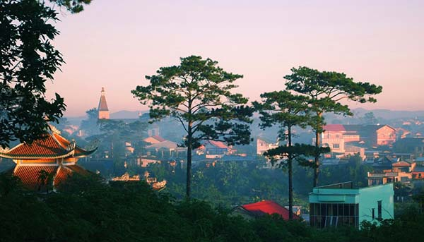 Ho Chi Minh city to Da Lat Transfer